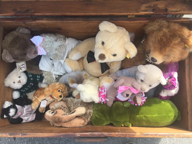 Medium teddy bears