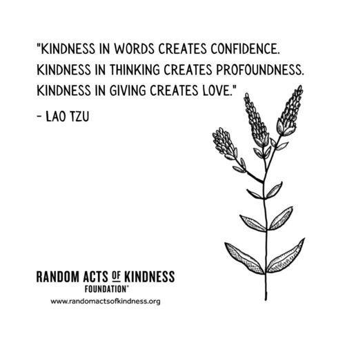Kindness in words creates confidence. Kindness in thinking creates profoundness. Kindness in giving creates love Lao Tzu