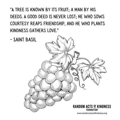 A tree is known by its fruit; a man by his deeds. A good deed is never lost; he who sows courtesy reaps friendship, and he who plants kindness gathers love. Saint Basil